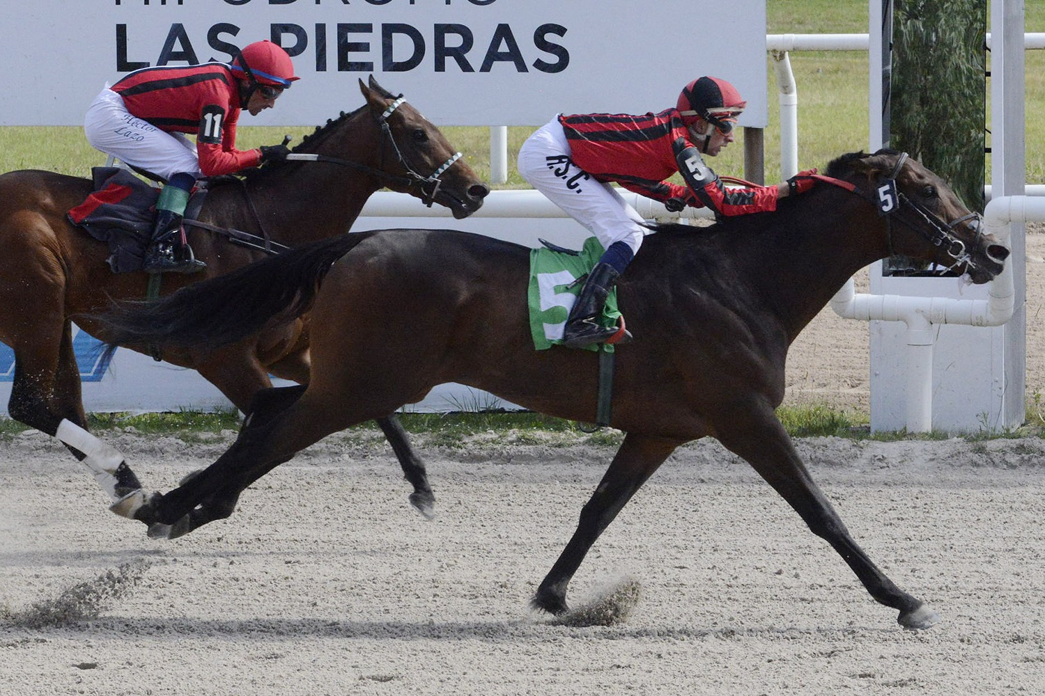 Helmuth (Smarty Jones) ganó Handicap (1000m-Arena-LPI). - Staff ElTurf.com