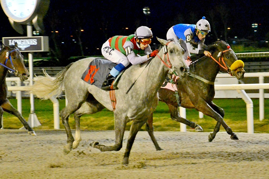 Icarly (Smarty Jones) se adjudica Condicional (1100m-Arena-MAR). - Staff ElTurf.com